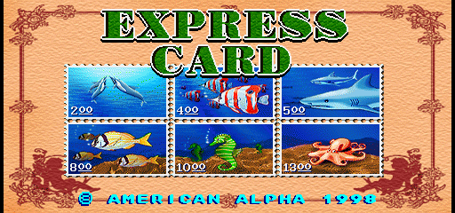 Express Card / Top Card